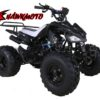Hawkmoto Interceptor 125cc Kids Quad Bike – Big Wheel