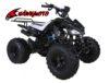 Hawkmoto Interceptor 125cc Kids Quad Bike – Big Wheel