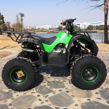 Hawkmoto Force 125cc Kids Quad Green